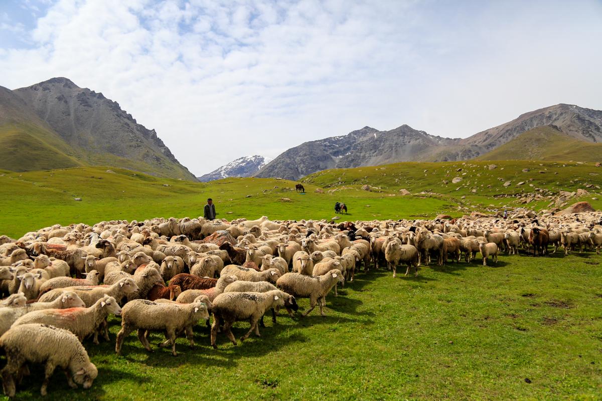 kirghizistan-2016--2