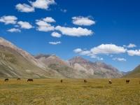 kirghizistan-2016--44