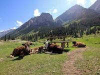 kirghizistan-1018