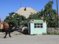 kirghizistan-1025