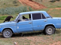 kirghizistan-1133