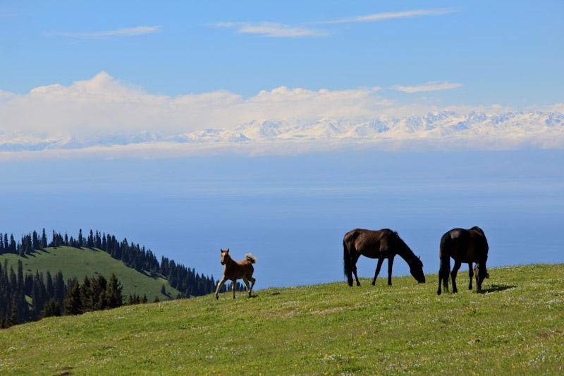 kirghizistan-0312