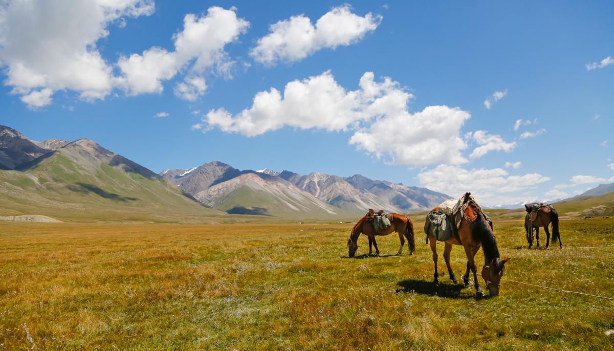 kirghizistan-2016--29